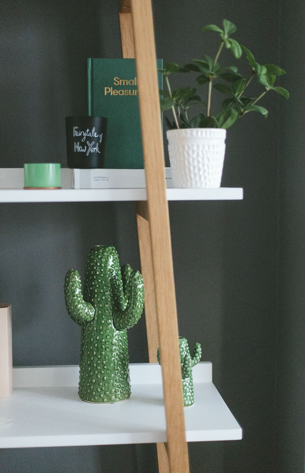 A cactus shaped vase on a shelf with other new home essentials