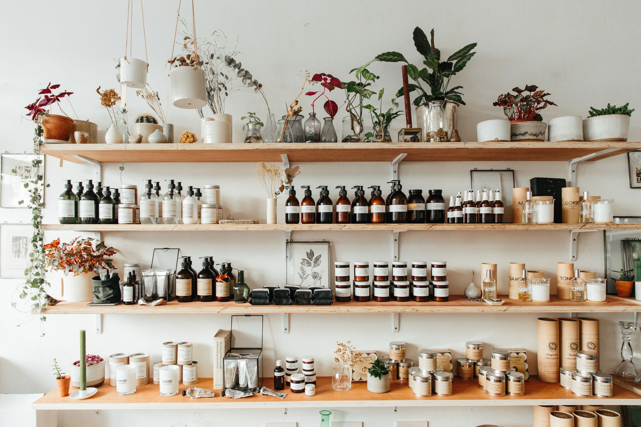 Shelves stocked full of products at Botany