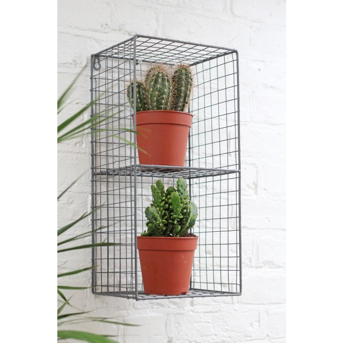 Small shelf made from caged wire with two potted cacti